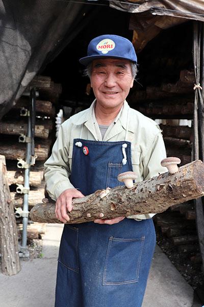 シイタケの原木栽培