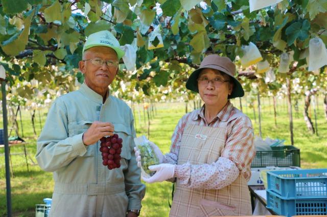 待望のワイナリー ブドウ生産に力を注ぐ