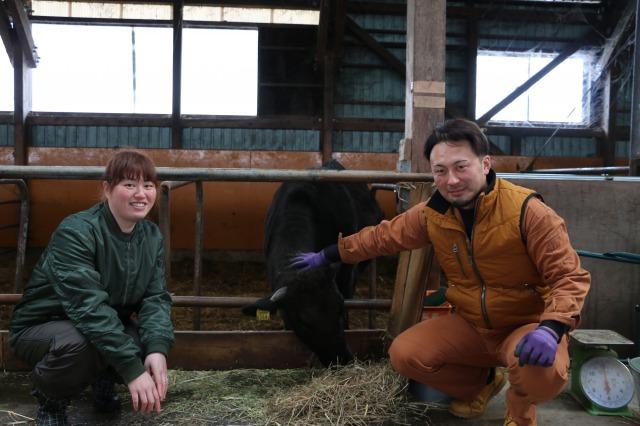 和牛繁殖で新規就農
