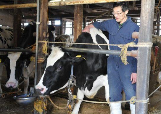 県内の酪農をけん引