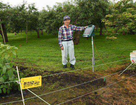 クマリンゴ園と隣接の畑に電気柵