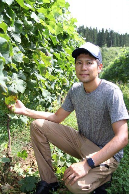 自家産ブドウのワイン 直売率上げ収益増へ