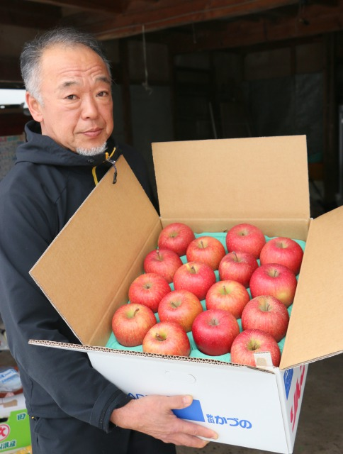 訳ありの家庭用リンゴ