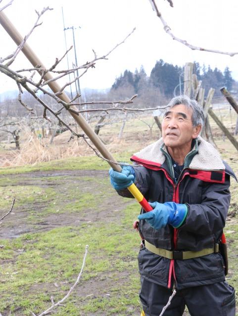 果樹共済から収入保険へ